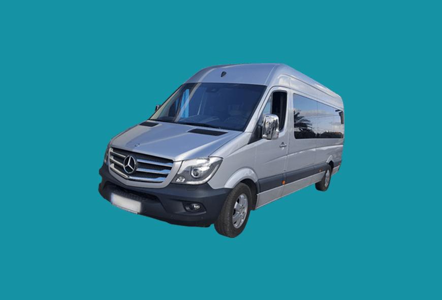 Sample Mini Van
