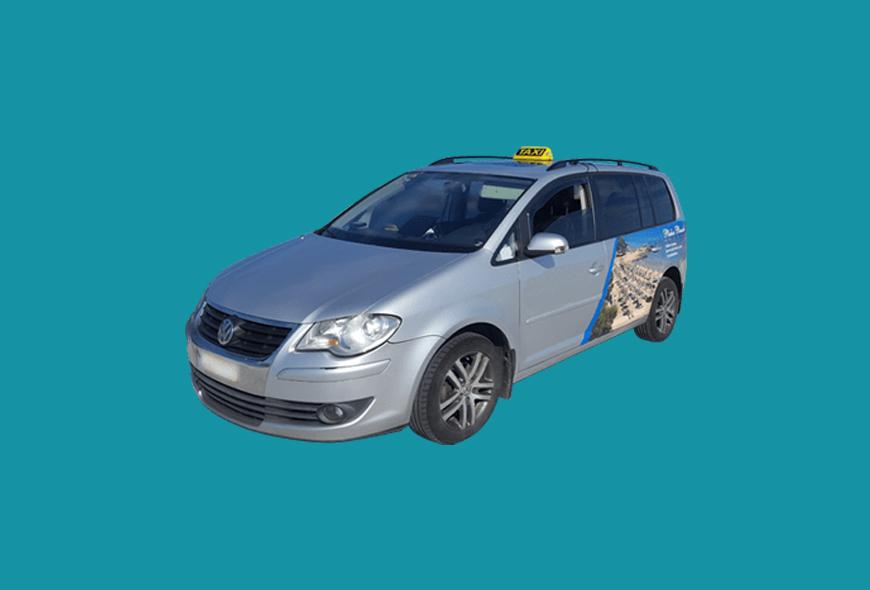 Sample Taxi